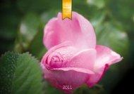 90 Jahre - Weleda