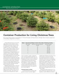 Container Production for Living Christmas Trees - Department of ...