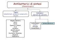 Antibatterici di sintesi