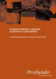 European financing of agrofuel production in Latin America - Profundo