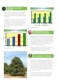 SP mango - Tessenderlo Group - Page 3