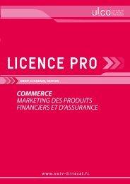 Licence pro Marketing des produits Financiers et d'Assurance