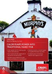 Calor PumPs Power Into tradItIonal FamIly Pub