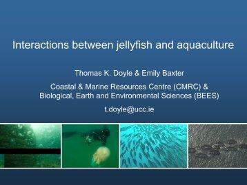 Coastal Biology