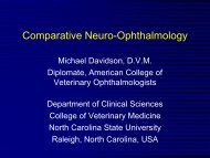 Comparative Neuro-Ophthalmology - North Carolina State ...