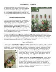 Gardening in Containers - Massachusetts Agriculture in the Classroom