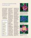 Jazzy Louisiana Irises - Zydeco Louisiana Iris Garden - Page 6