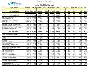 Informe de Ejecución Enero 2011 - Ministerio de Comercio e ...