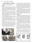 Pé torto: tratamento pelo método Ponseti - Global HELP - Page 6