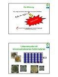 Ing. Winfried Scheirer (Univ. für Bodenkultur/ PEA-CEE GmbH) - Page 4