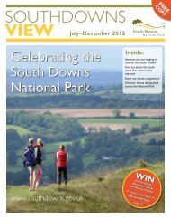 South Downs View - South Downs National Park Authority