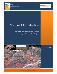 Chapter 1 Introduction - NTEPA - Northern Territory Government