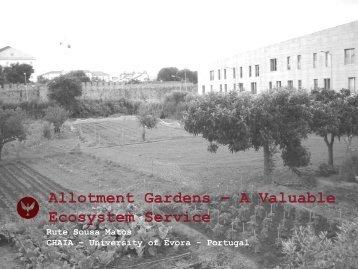 Allotment gardens