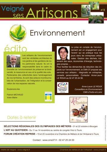 Environnement - Villes Internet