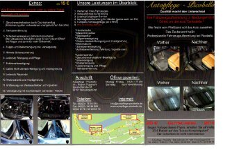 Flyer - Download (deutsch) - Autopflege - Picobello