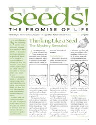 Seeds - KidsGardening.com
