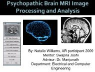 Analyzing 3D Structural Brain MRI Images - CSEP Center for ...