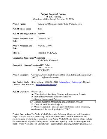 Project Proposal Format Proposal Sample In Pdf Employment Proposal