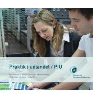 Praktik i Udlandet/PIU (til arbejdsgivere) - Københavns Tekniske Skole