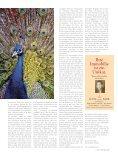 Sachsenwald aktuell - Kurt Viebranz Verlag - Page 3