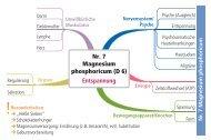 Nr. 7 Magnesium phosphoricum
