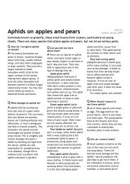 Aphids on apples and pears - Which.co.uk