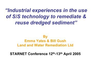 Industrial experiences in the use of S/S technology to ... - Starnet