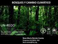 Bosques y Cambio Climático (FAO) - CINU