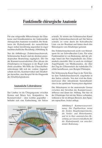 Wunderbar Chirurgische Anatomie Des Oberkiefers Ideen - Anatomie Von ...