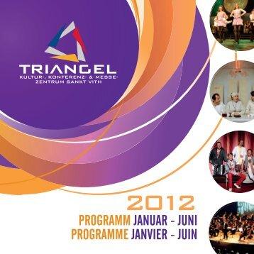 Ball 28.01.2012 - Triangel