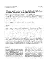 Global-scale genetic identification of hammerhead sharks - Nova ...