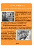Revista DGASPC Sector 6, Numarul 12 - Septembrie 2009 - Direcţia ... - Page 2
