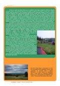 Revista DGASPC Sector 6, Numarul 12 - Septembrie 2009 - Direcţia ... - Page 7