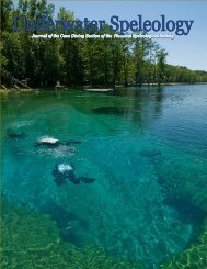 to Download PDF of Volume 38 - NSS Cave Diving Section
