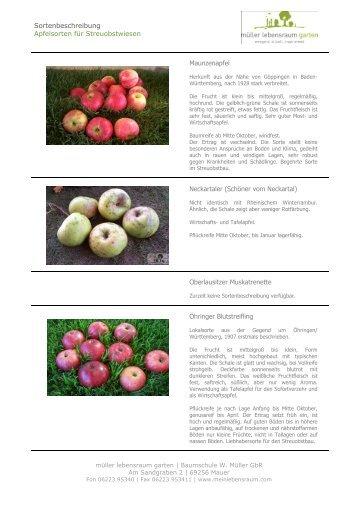 Apfelsorten für Streuobstwiesen M-Z - müller lebensraum garten