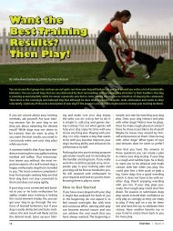 Want the Best Training Results? Then Play! - Dog Agility Arizona