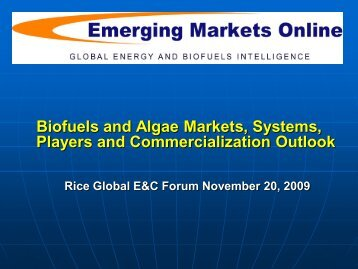 Global Biodiesel Opportunities and Outlook by Emerging Markets ...