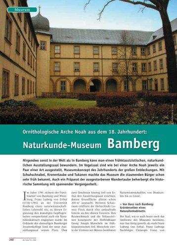 Naturkunde-Museum Bamberg - Der Falke