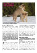 Hunde im Doppelpack - bei Hunde-logisch.de - Seite 4