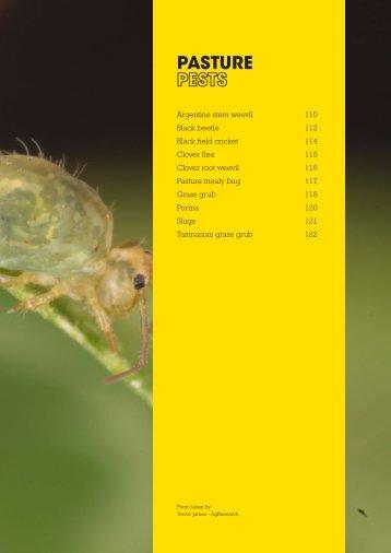 Pasture Pests - Agriseeds Pasture Site