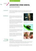 Pasture Pests - Agriseeds Pasture Site - Page 2