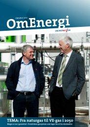 TEMA: Fra naturgas til VE-gas i 2050 - Energinet.dk