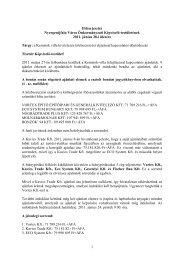 Kernstok-villa felújításával kapcsolatos döntéshozás - Nyergesújfalu
