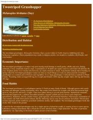 Melanoplus bivittatus fact sheet