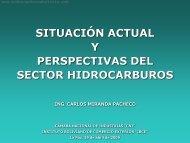 situación actual y perspectivas del sector hidrocarburos