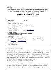 pdf - format - Høgskolen i Bergen