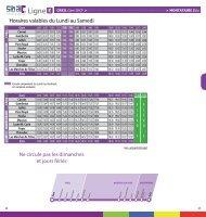 guide voyageur STAC_ligne E_2013
