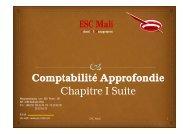entreprises. - ESC-Mali