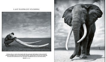 140705 The Times Magazine - Jerome Starkey
