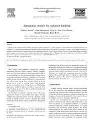 Appearance models for occlusion handling - Vision at IME-USP
